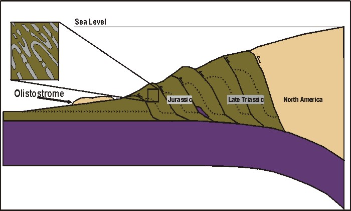 Geology: accretionary prism